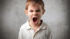 detskata-agresia